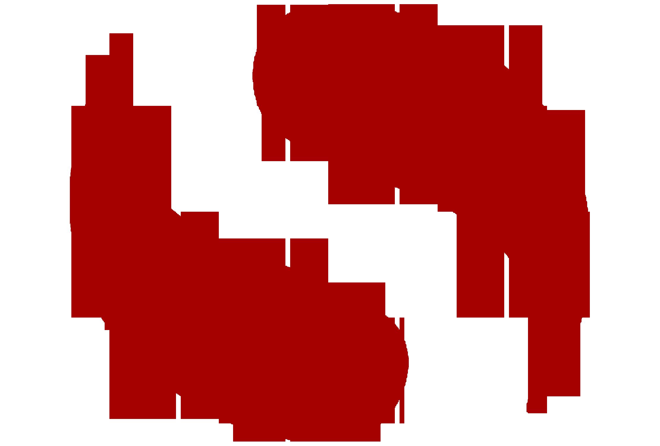 large 'S' logo